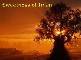 tree-iman-telugu-islam